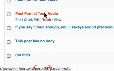 Wekelijkse WordPress tip: de ID vinden van een pagina/post/etc vinden