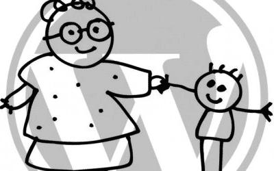 Lees de blog: Child Theme maken om je aanpassingen in te doen