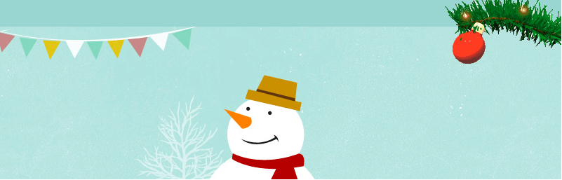 Christmas Ball on Branch WordPress Winter Plugins