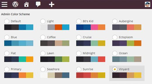 meer-kleurschema-s-wordpress