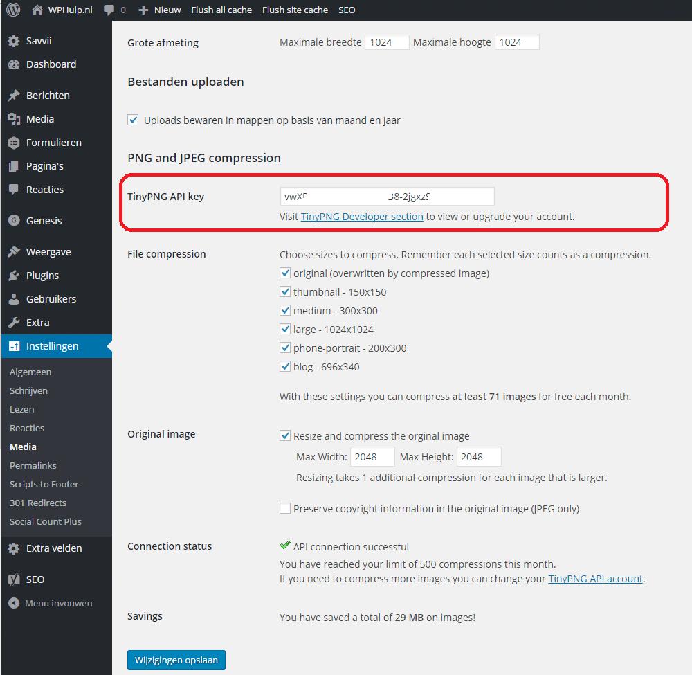 tinyPNG plugin instellingen