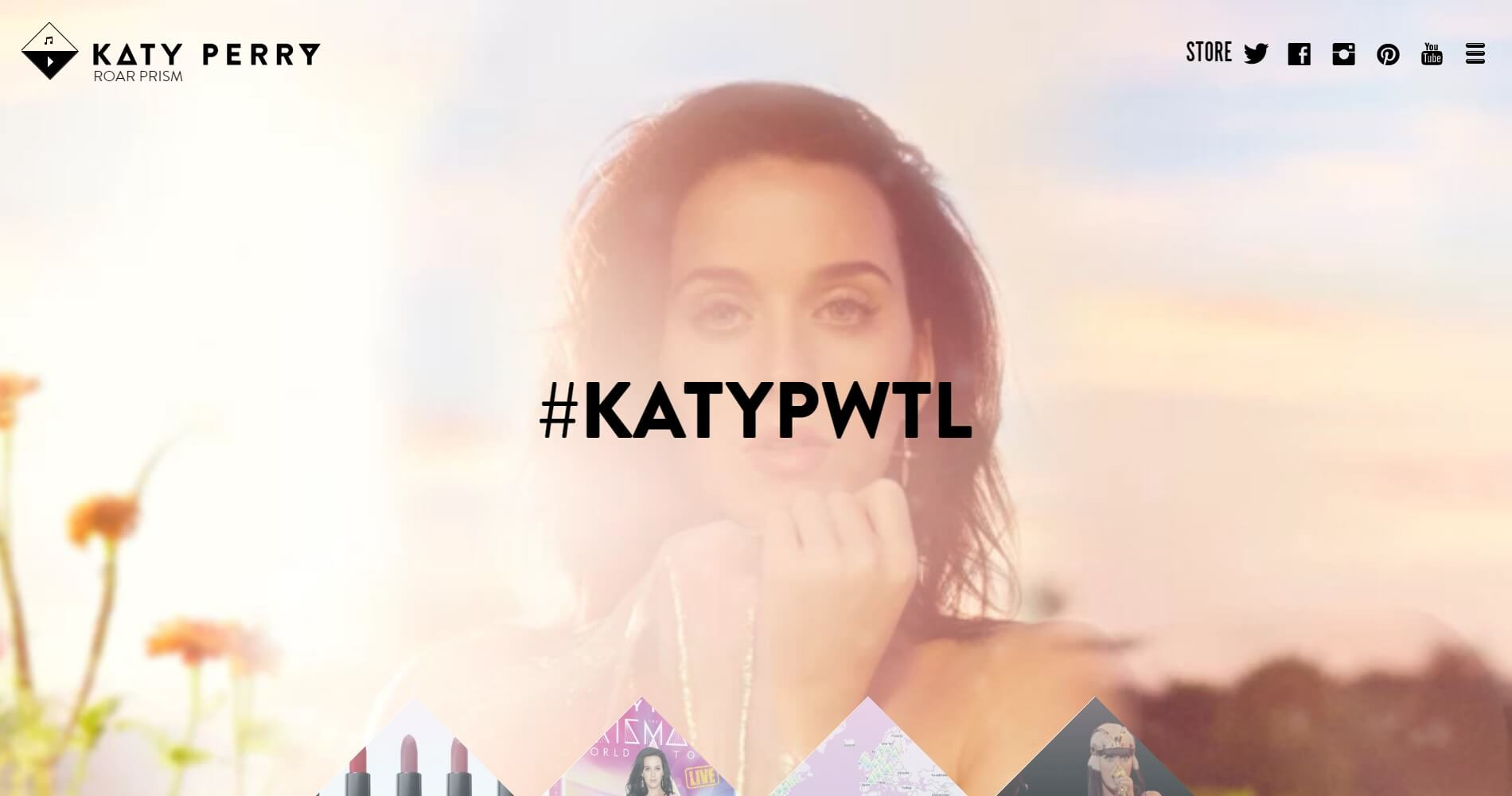 WordPress Website Katy Perry