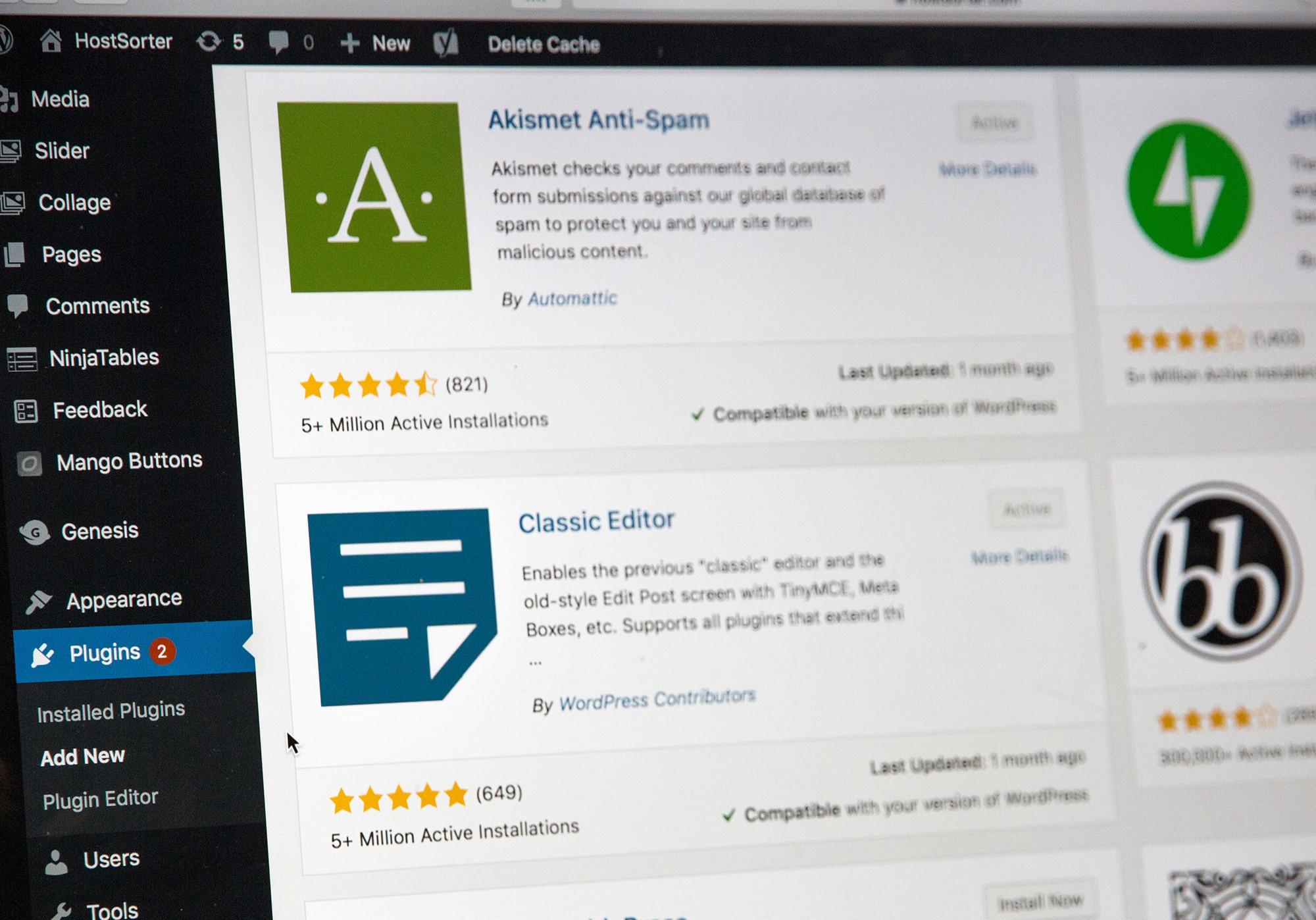 wordpress website succes